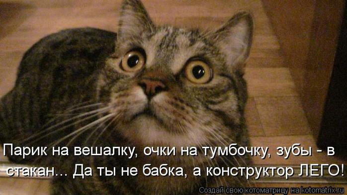 Котоматрица-2012. Выпуск 31 kotomatritsa_6W (700x392, 49Kb)