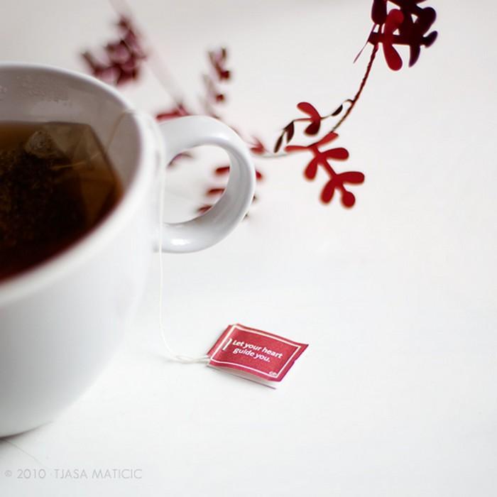 Нежное макро-фото от фотографа Tjasa Maticic 26 (700x700, 51Kb)