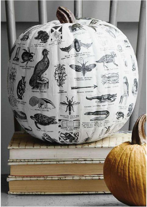 textbook-decoupage-pumpkin (482x676, 455Kb)