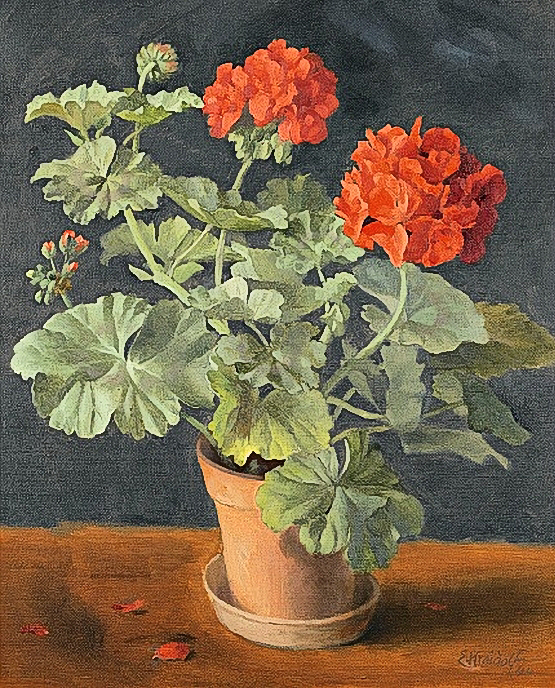 Geraniums in a Pot, by Ernst Kreidolf (555x688, 464Kb)