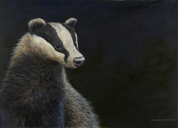 177 mr badger_jpg-1 (580x417, 151Kb)