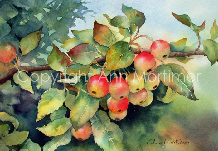 4430707_rb_green_crab_apples (700x484, 155Kb)