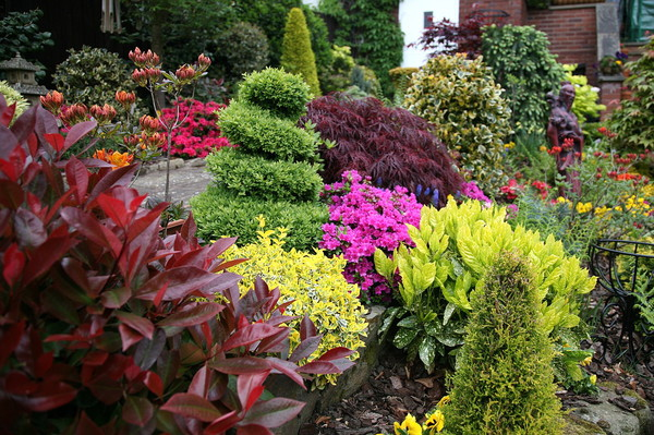 image День знакомства саду