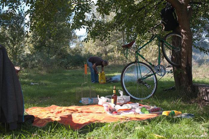 пикник киев осень