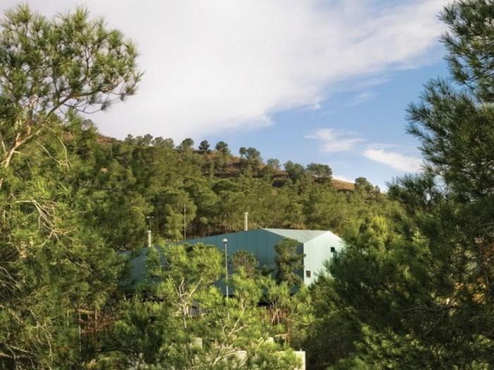 Дом среди сосен 10 (700x524, 118Kb)
