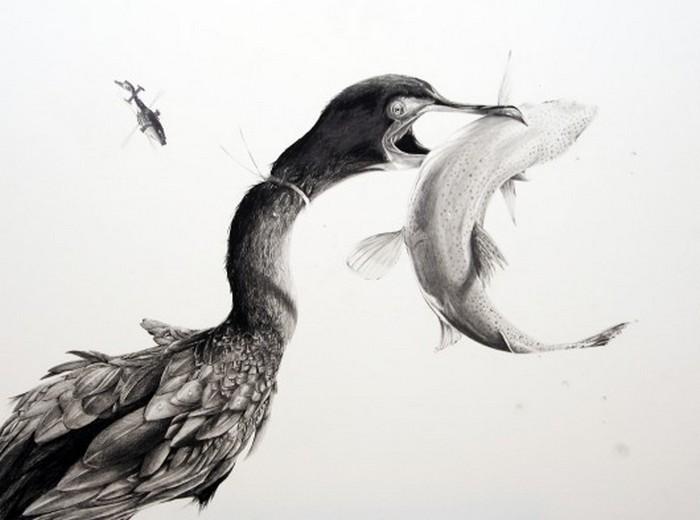 Черно белые рисунки от Martin Kalanda 3 (700x520, 50Kb)