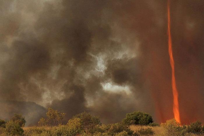367445b354b Огненное торнадо в Австралии. Обсуждение на LiveInternet ...