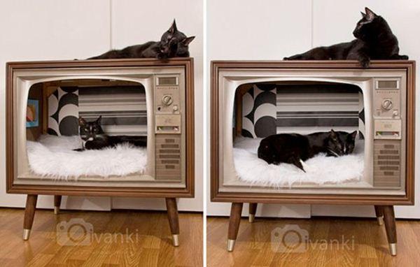 Креативные дома для котов3 (600x382, 37Kb)