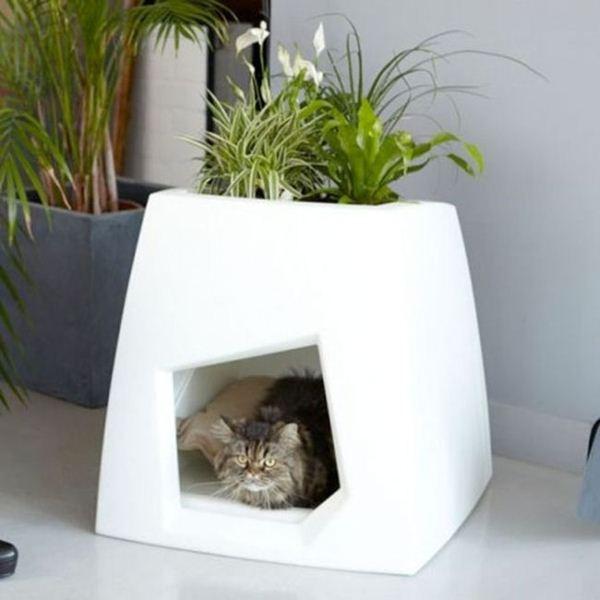 Креативные дома для котов5 (600x600, 33Kb)