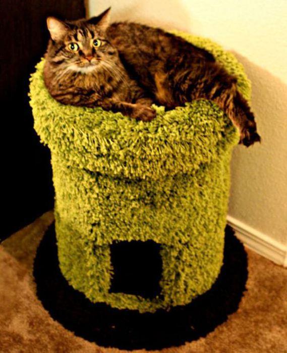 Креативные дома для котов19 (569x700, 66Kb)