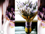 Превью purple-lavender-wedding-bouquets-2 (500x375, 249Kb)
