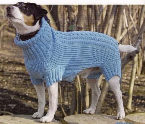 комбинезон для собаки схема вязания обсуждение на Liveinternet