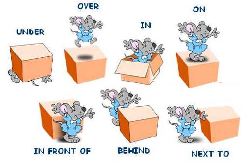 3949747_prepositions_of_position (506x333, 20Kb)