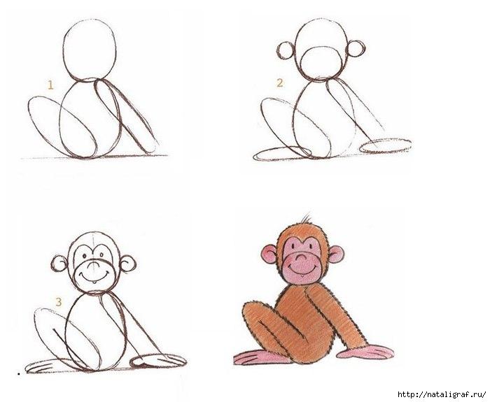 легкая картинка обезьянки них