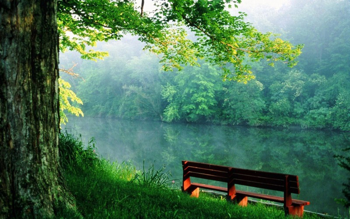 1029160-r3l8t8d-1000-nature___rivers_and_lakes_bench_by_the_river_081332_ (700x437, 392Kb)