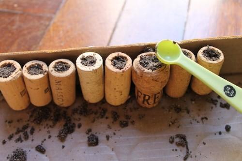 cork_planters10-500x333 (500x333, 41Kb)