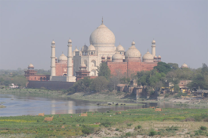 5130025_taj_mahal_view (700x465, 95Kb)