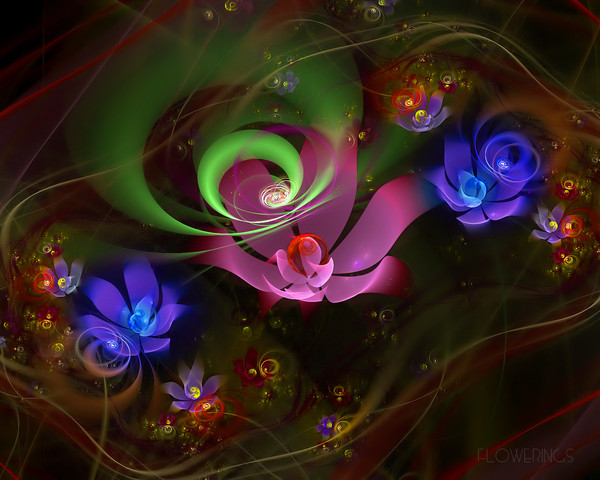 Flowerings_18_by_love1008 (600x480, 89Kb)