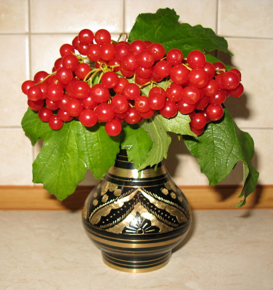 Букет калины означает, букеты роз казань