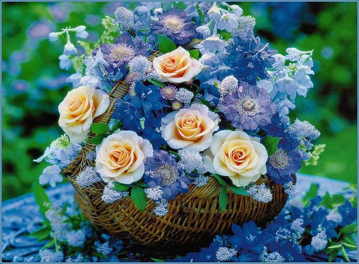 красивые фото открытки цветы