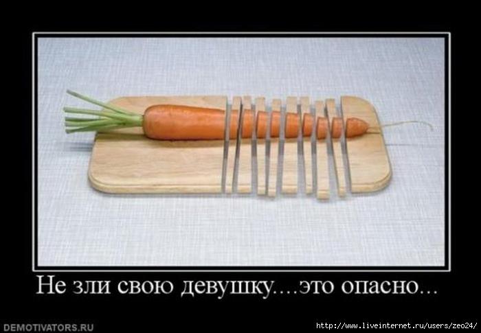 http://img0.liveinternet.ru/images/attach/c/7/98/202/98202052_92793513_large_12742749.jpg