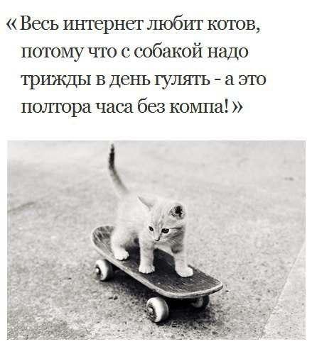 1363371581_TnxbEoZodmU (439x485, 33Kb)