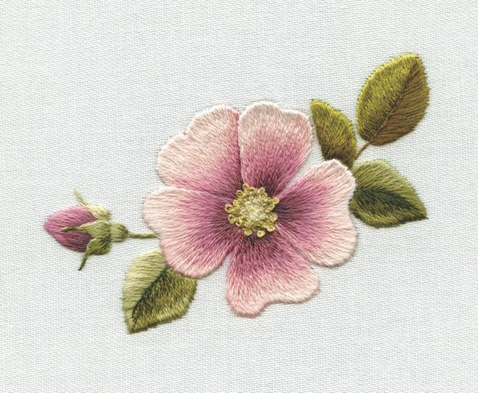 complete_dog_rose_0 (700x575, 131Kb)