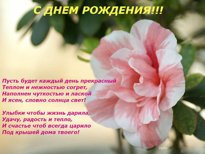 С днем рождения открытка с именем азалия, стразами фото картинки