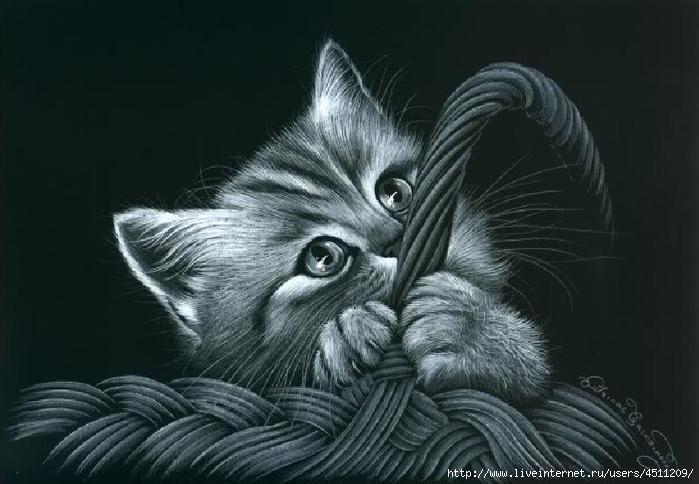 Вышивка котов на черной канве 548