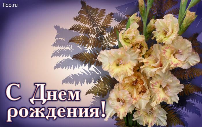 http://img0.liveinternet.ru/images/attach/c/8/100/359/100359450_large_S_dnem_rozhdeniya_3.jpg