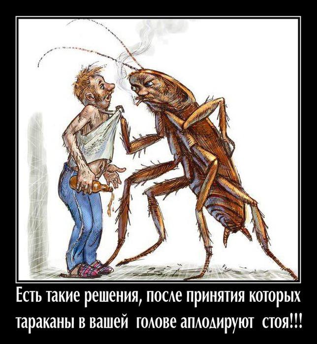 юмор картинки про тараканов известному человеку, стать