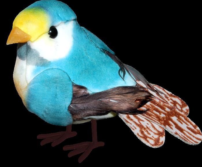 1368208841_ditab_bird2 (700x577, 390Kb)