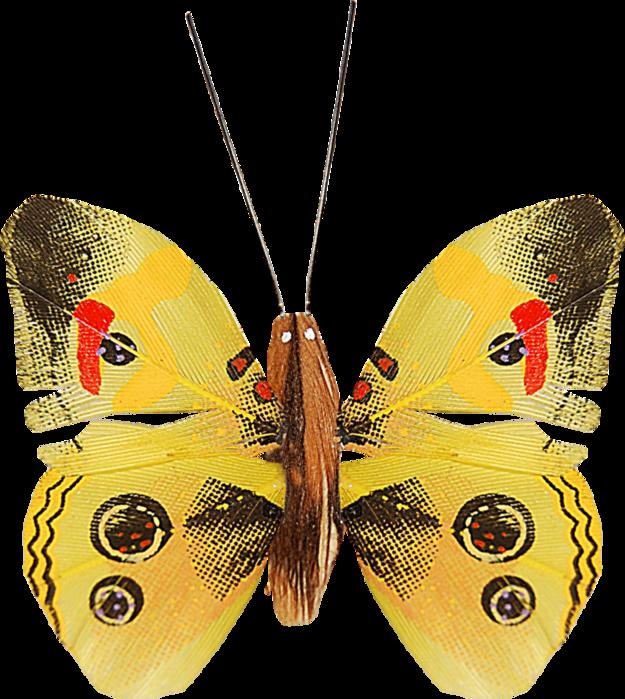 1368208970_ditab_butterfly1a (625x700, 608Kb)
