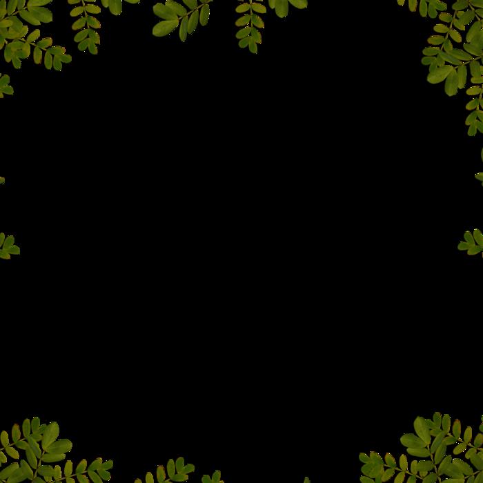 4391866_ditab_overlay (700x700, 145Kb)