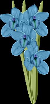 1368217063_flowers1 (171x353, 57Kb)