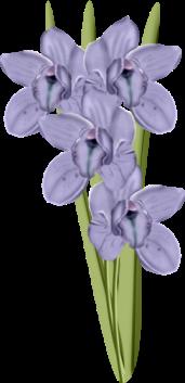 1368217105_flowers3 (171x353, 60Kb)