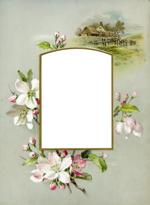 1368265872_Floral_Frame_No3_by_DustyOldStock (512x700, 69Kb)