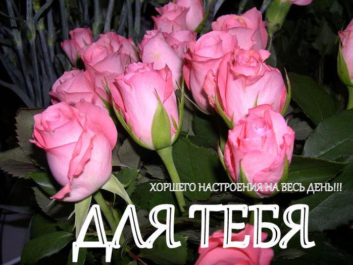 Цветы тамарочке открытка, гифки