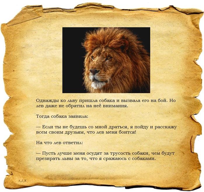 Стихи мужчина лев