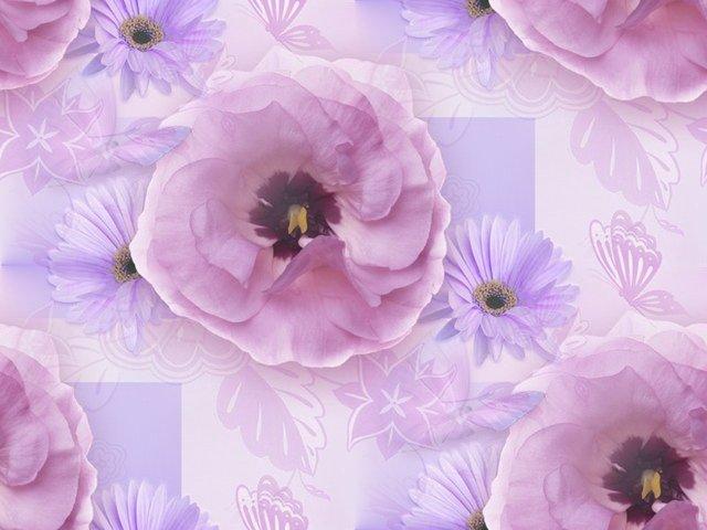 Фон для открытки с фиолетовыми цветами, прикол