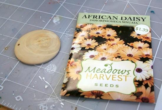 Кулон летний своими руками из пакетика от семян
