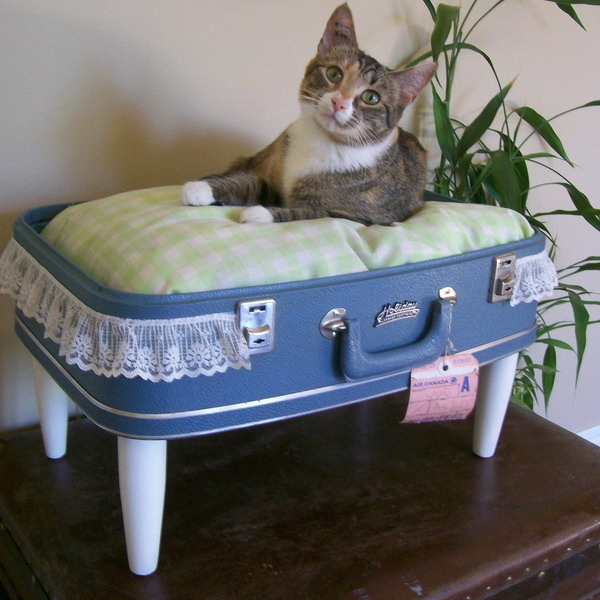 recycled-suitcase-ideas-pets-bed1 (600x600, 94Kb)