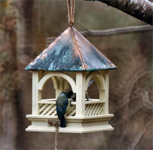 60414 - Bempton Hanging Bird Table (500x491, 219Kb)