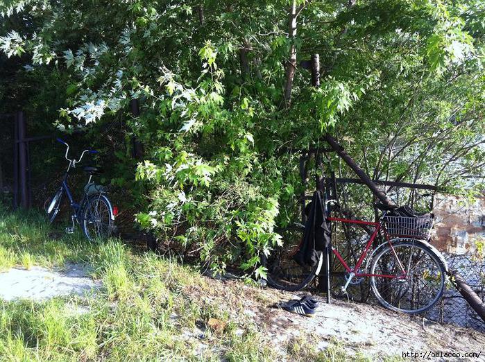 велопрогулки киев
