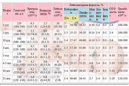 Общий анализ мочи у ребенка эппл Прикрепление к поликлинике Балтийская