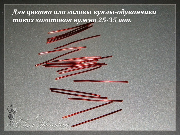 DSC05635 (700x525, 131Kb)