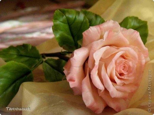Розы из холодного фарфора и как сделать молды для лепки листьев (20) (520x390, 98Kb)