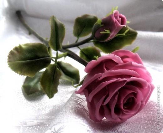 Розы из холодного фарфора и как сделать молды для лепки листьев (30) (520x425, 115Kb)