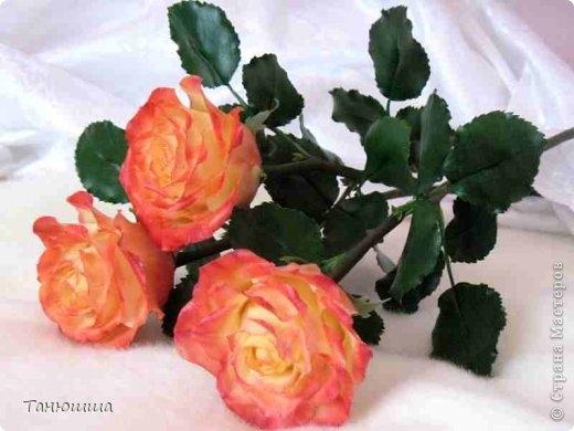 Розы из холодного фарфора и как сделать молды для лепки листьев (31) (520x390, 104Kb)