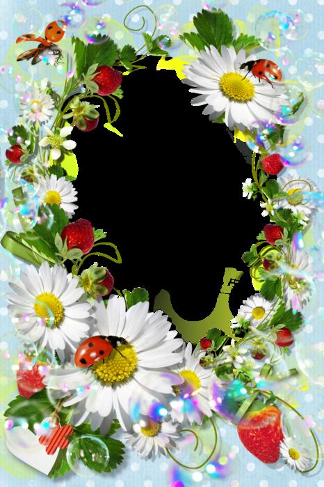 Свадебные бокалы, рамки для поздравления летние